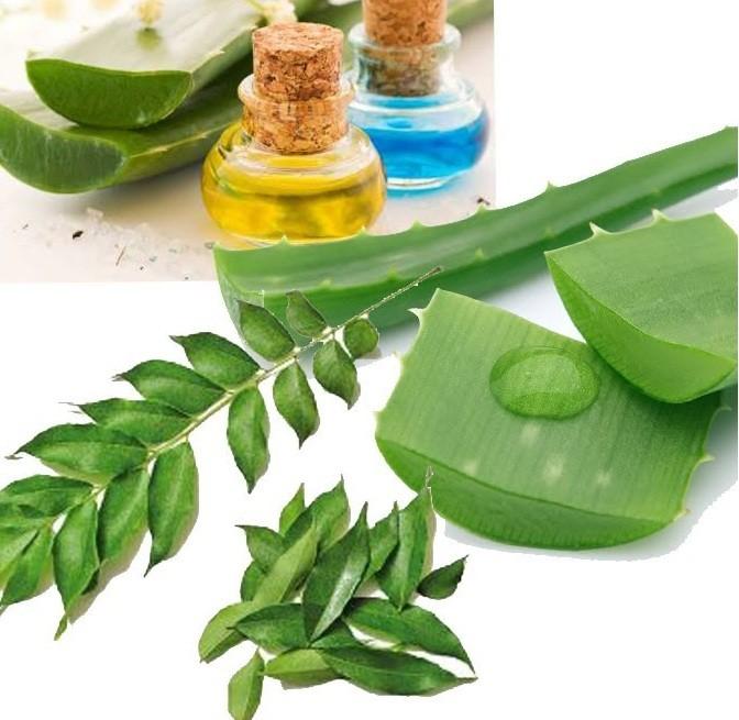 وصفات من الأعشاب الفعالة الطبيعية تساعد على تطويل الشعر
