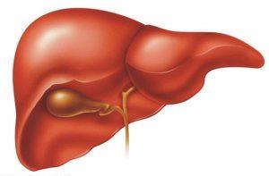 تليف الكبد