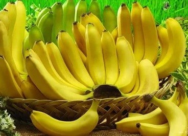 فوائد الموز - فوائد قشر الموز - اضرار الموز