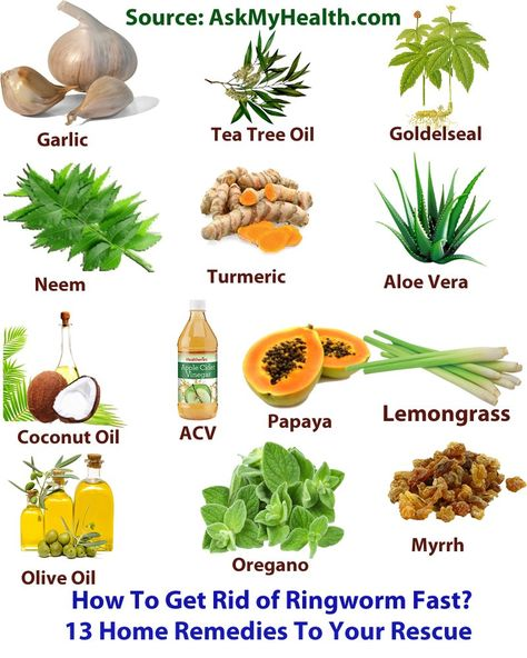 علاج ديدان البطن بالاعشاب والوصفات الطبيعية