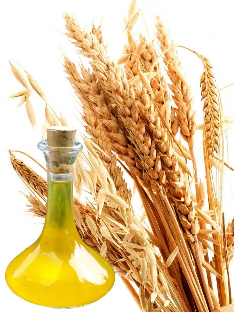 فوائد زيت جنين القمح للبشرة والشعر