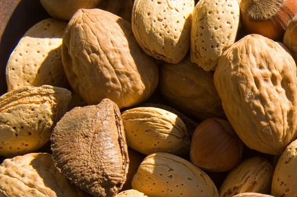Photo of فوائد الجوز للصحة والجسم