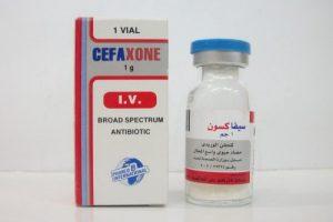 سيفاكسون Cefaxone امبول دواعي الاستعمال والاحتياطات اللازمة