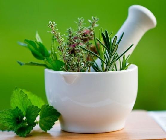أعشاب طبيعية تساعد فى زيادة الوزن