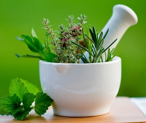 a0641f580 أعشاب طبيعية تساعد فى زيادة الوزن - موسوعة دار الطب