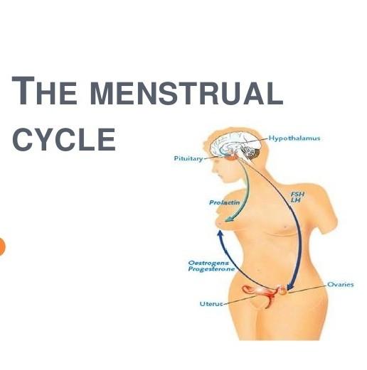 انقطاع الدورة الشهرية وأعراضها