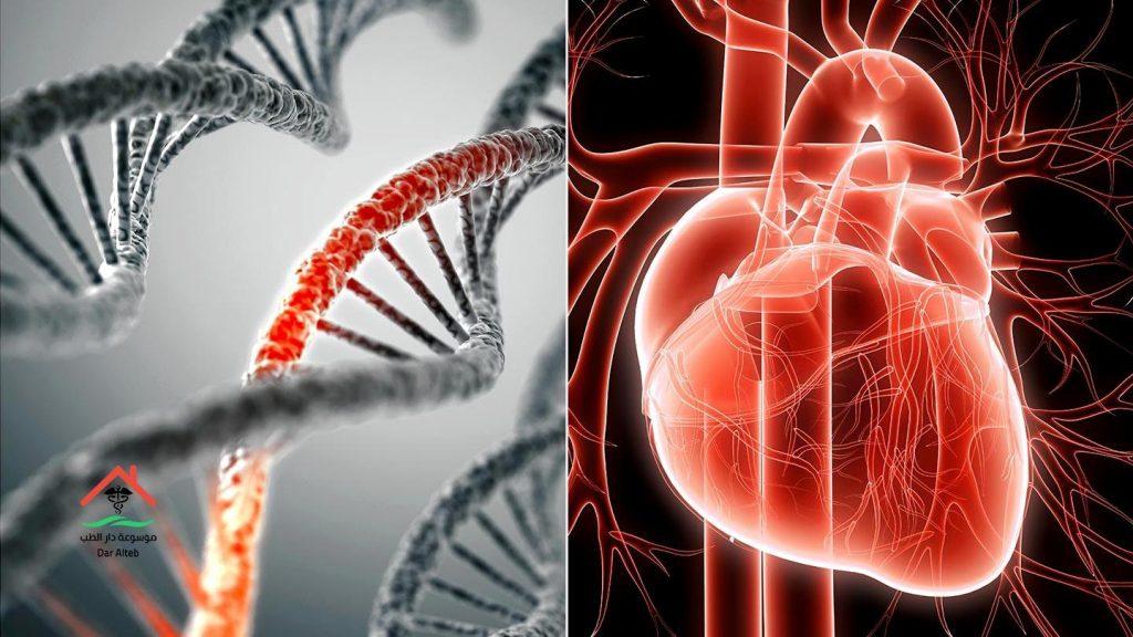 طرق العلاج والوقاية من أمراض القلب