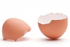 فوائد قشر البيض للرجال وأفضل طريقة لاستخدامه
