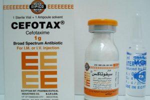 حقن سيفوتاكس Cefotax مضاد حيوي قاتل للبكتيريا ودواعي الاستعمال