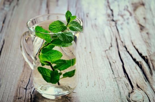 علاج النزلة المعوية بالاعشاب