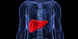 علاج سرطان الكبد بالأعشاب