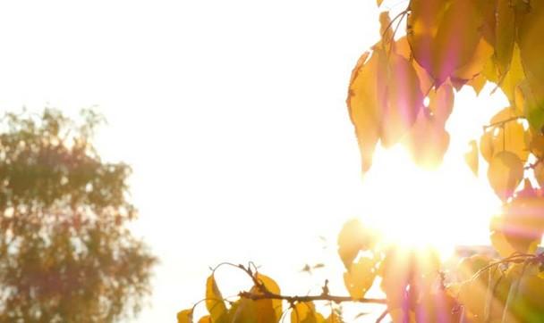 علاج ضربة الشمس