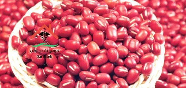 فوائد الفاصوليا الحمراء