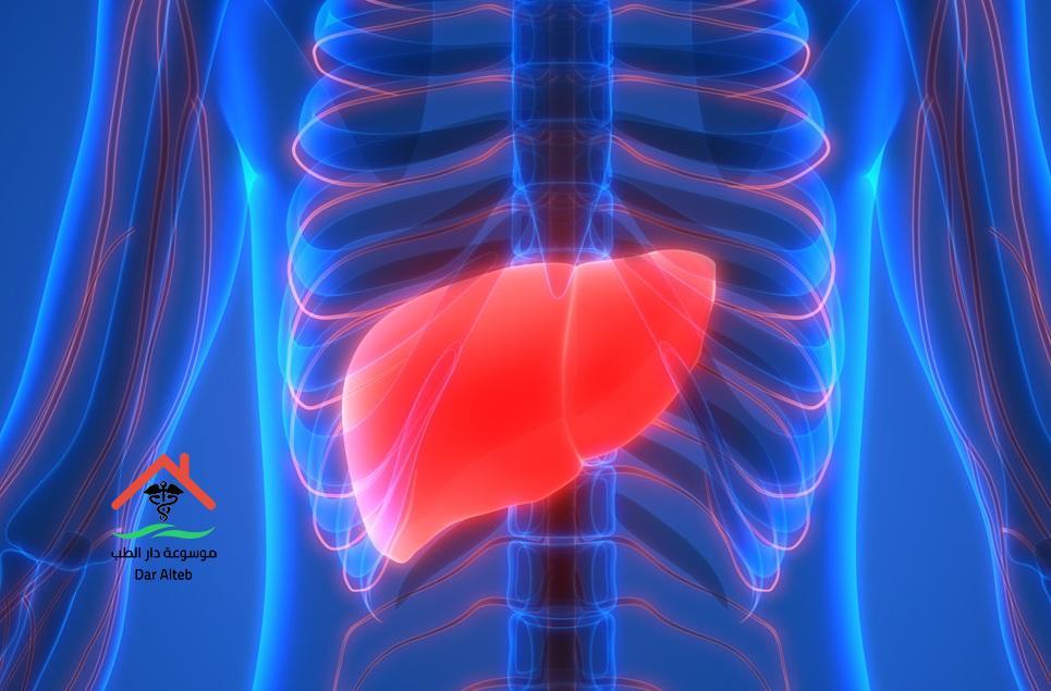 أنزيمات الكبد المعدل الطبيعي وعلاج ارتفاعها