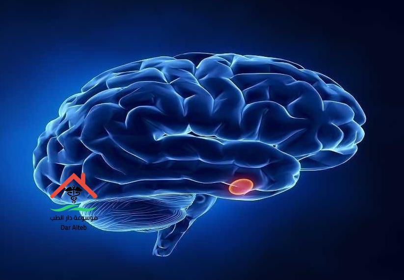 فوائد وأهمية الغدة النخامية وأعراض الخلل الذي يصيبها