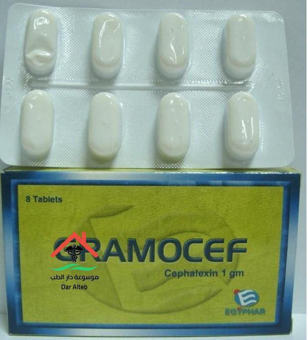 جراموسيف Gramocef لعلاج عدوي الجهاز البولي والتناسلي