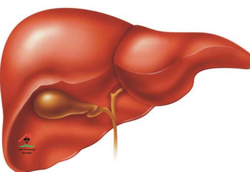الأعراض المصاحبة لمرض أنزيم الكبد