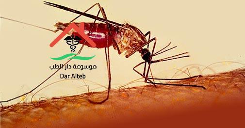 الملاريا وأسبابه وأعراضه وطرق علاجه