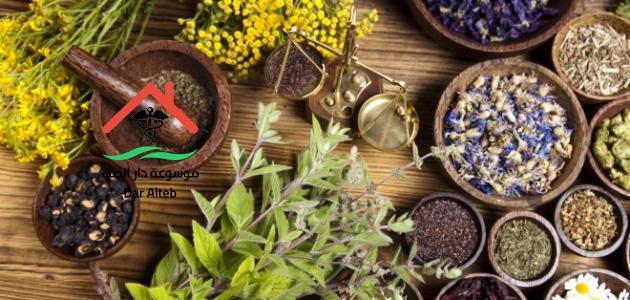 Photo of علاج البواسير بالاعشاب والوسائل الطبيعية