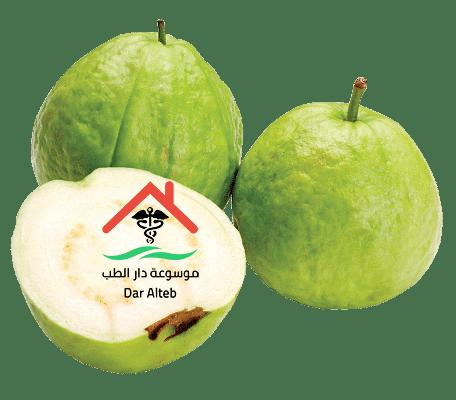 Photo of ما هي فوائد الجوافة .. تعرف على جميع فوائد الجوافة والقيمة الغذائية لها