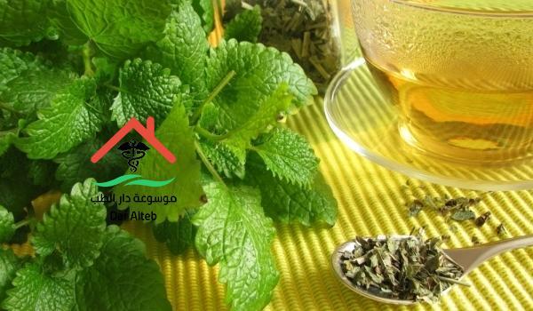 علاج البواسير بالأعشاب والزيوت