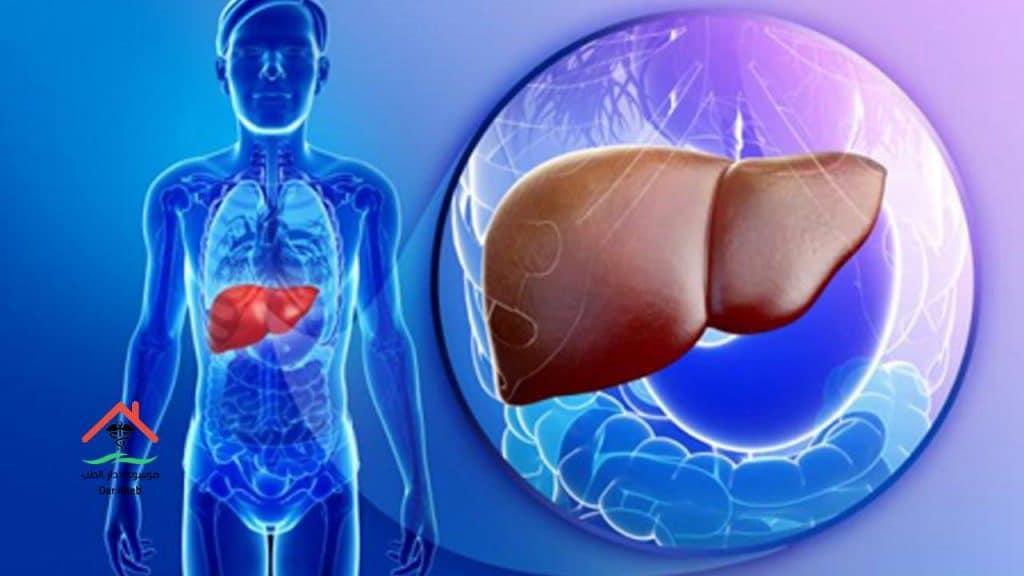 Photo of اعراض تليف الكبد وطرق العلاج والأسباب التي تؤدي للإصابة به