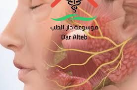 Photo of علاج العصب السابع بالاعشاب