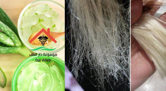 علاج الشعر التالف من الصبغات والفرد