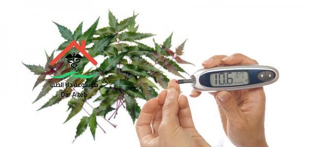 علاج السكر بالأعشاب نهائيا