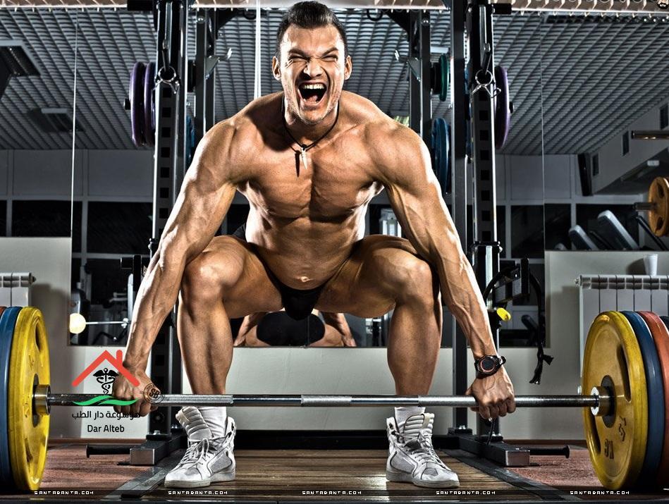 أساسيات كمال الأجسام للمبتدئين ماذا تأكل وكيف تتدرب بطريقة صحيحة