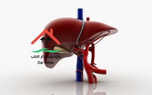 Photo of علاج تليف الكبد بالأعشاب والوسائل الطبيعية