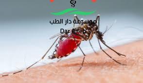 Photo of اعراض حمى الضنك وطرق العلاج