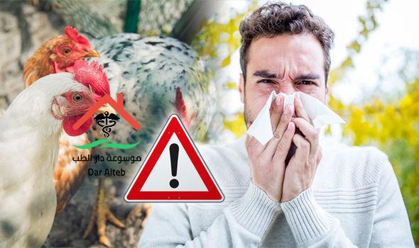 Photo of أعراض إنفلونزا الطيور وعلامات ظهورها عند الإنسان