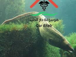 Photo of الاسماك اللافكية معلومات هامة تعرف عليها