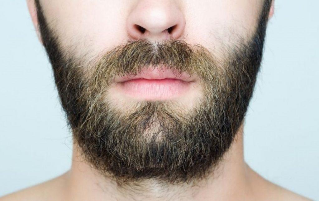 كمية البصيلات اللازمة لزراعة شعر اللحية